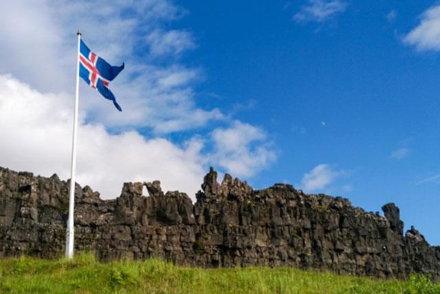アイスランドモス(ICELAND MOSS)