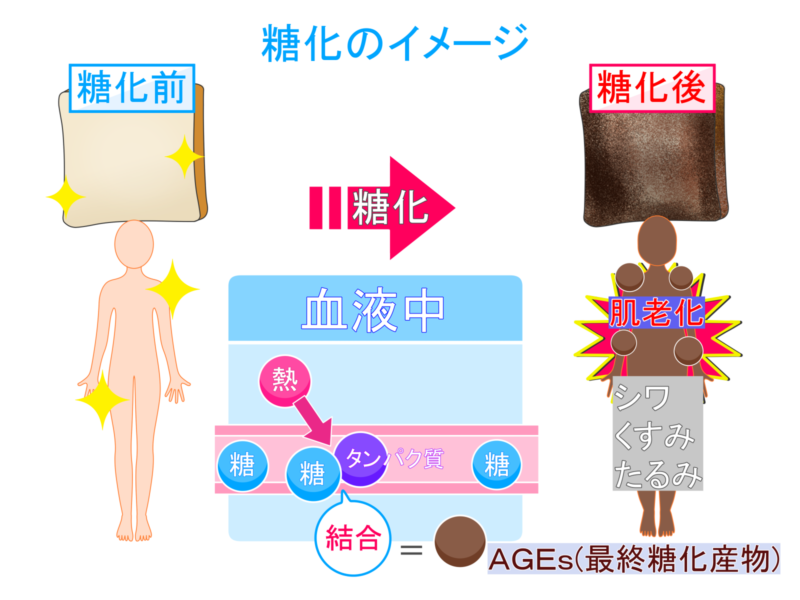 糖化のメカニズム